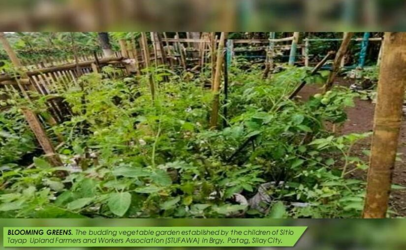 SIFI-RSS VEGETABLE GARDENING AND VERMICOMPOSTING BY CHILDREN